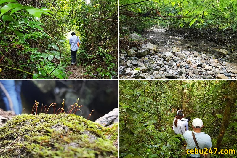 spartain trek adventure cebu