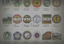 universities and colleges in cebu