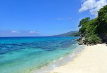best beaches cebu