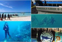 Cebu Diving Shops